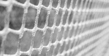 white net